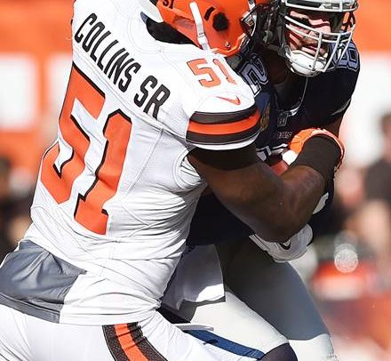 Jamie Collins 'a joy to watch'